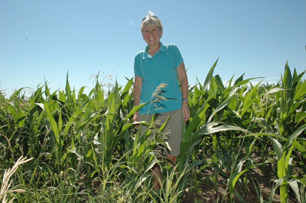 Fourth of July corn (7.4.11)